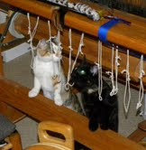 Kittens in the Loom