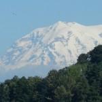 Mt. Rainier, from Tacoma